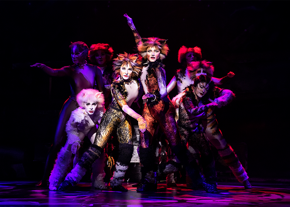 "More Info for ""Cats"""